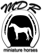 Logo - MDR Miniature Horses